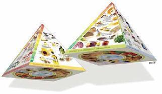 DGE-Pyramidenseiten